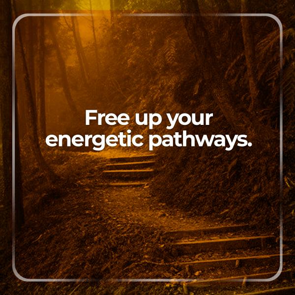 energetic_pathway_2